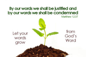 Let your words grow from Gods word