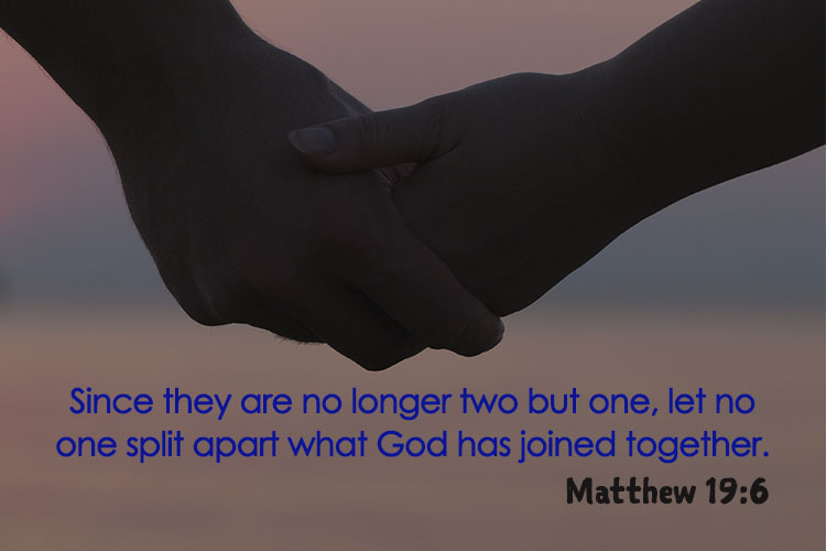Since they are no longer two but one, let no one split apart what God has joined together.