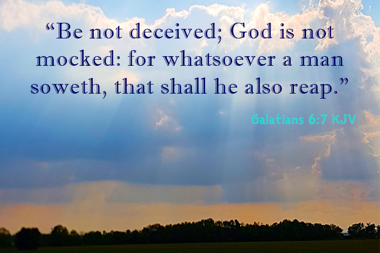 "Be not deceived; God is not mocked: for whatsoever a man soweth, that shall he also reap."" ‭Galatians‬ ‭6:7‬ ‭KJV‬‬"