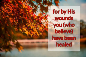 for His wounds you (who believe) have been healed