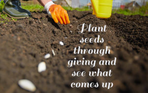 planting seeds - God's plan of sowing and reaping