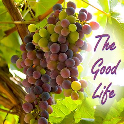 The Fruitful Good Life